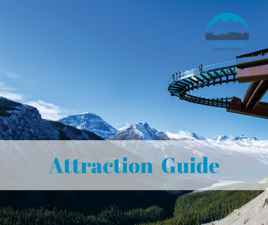 Attraction Guide